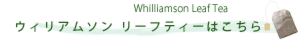 will leaf tea banner.psd